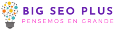 Big SEO plus - firma